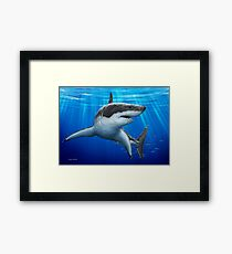 Blue Predator (Great White Shark) Framed Print