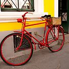 Red Bicycle by Rae Tucker