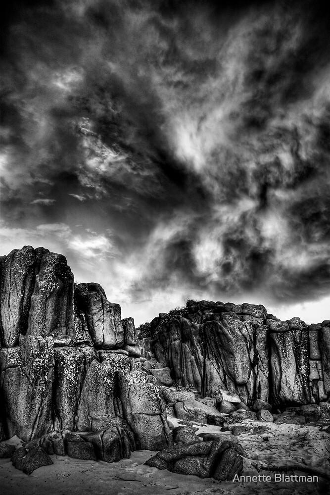 Storm Brewing by Annette Blattman