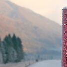 Frosted Red Pole by jojobob