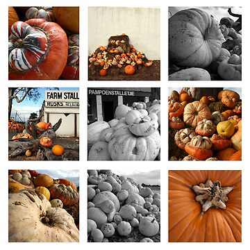 Pumpkins by louishiemstra