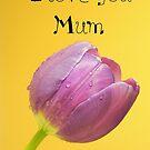 Love you mum by ~ Fir Mamat ~