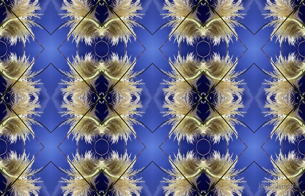 Kaleidograss 1 by louishiemstra