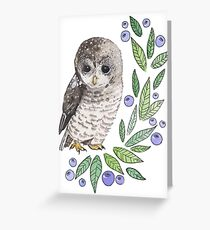 A cute owl with blueberries Greeting Card