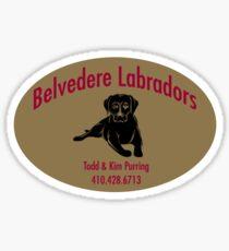 Belvedere Labs Sticker