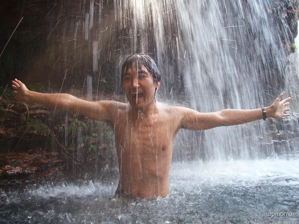 Waterfall Bliss by wpmorro