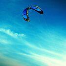 Go fly a kite by iamelmana