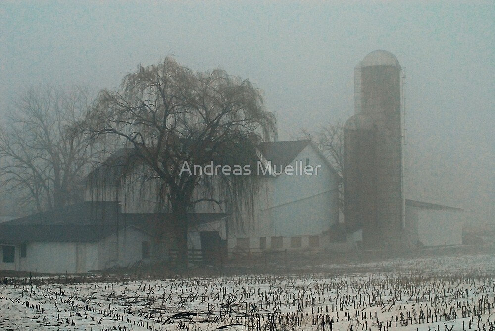 Winter Morning  by Andreas Mueller