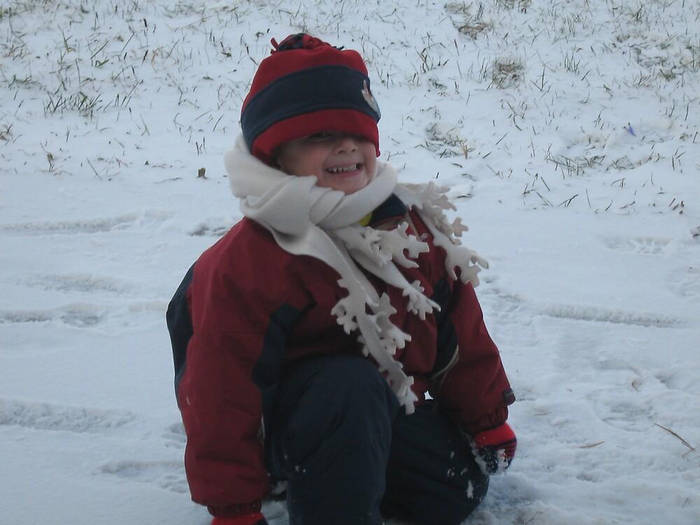 snowy winter by sanrda brochu