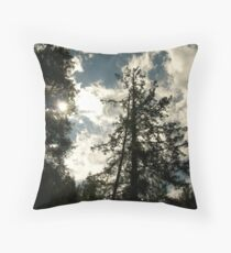 Magestic Pines Throw Pillow