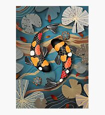 Koi Watergarden Photographic Print