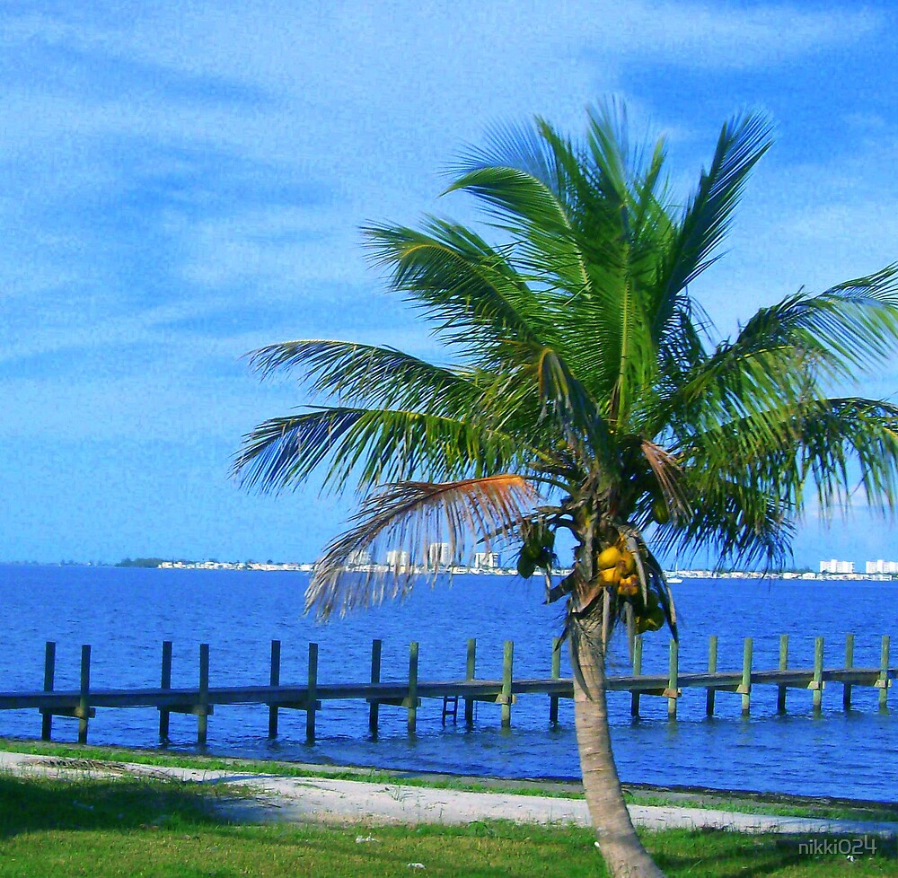 THE COCONUT PALM by nikki024