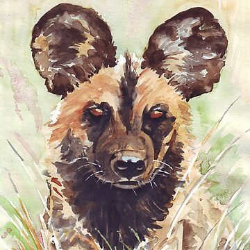 African Wild Dog by MareeClarkson