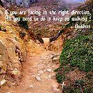"Buddhist ""Life"" quote by Nancy Richard"