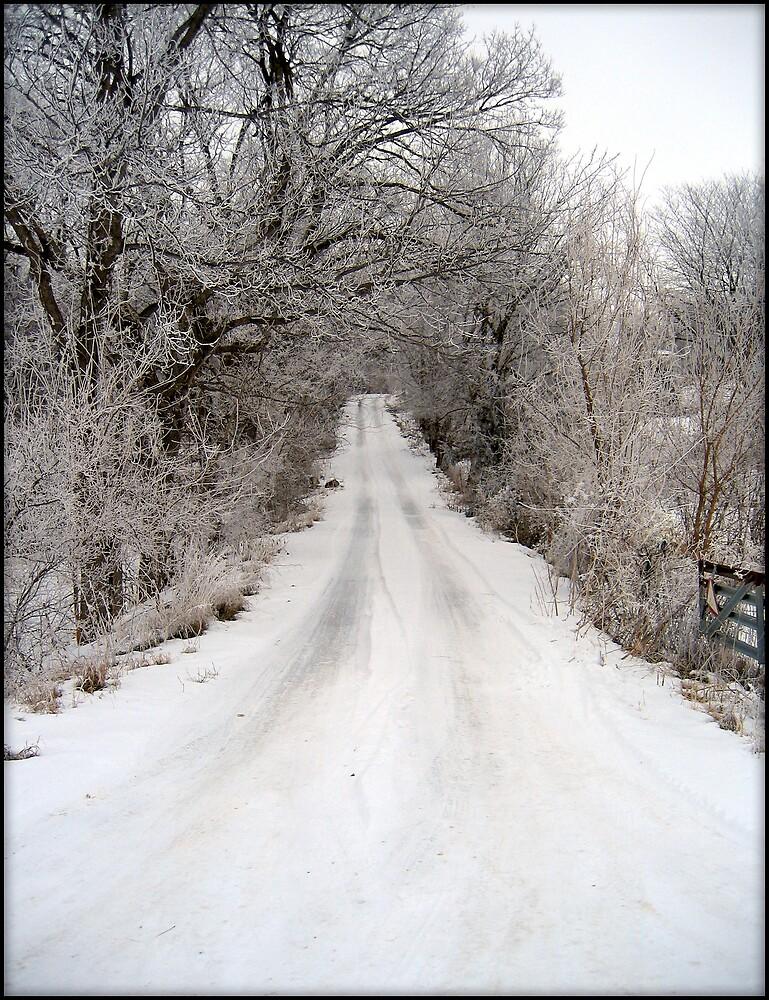 Snowy Lane by Jing3011