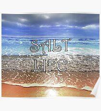 Salt Life Poster