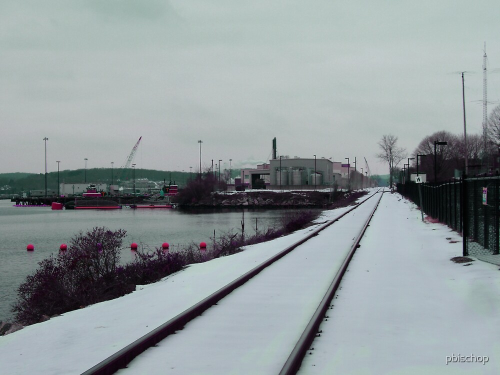 Tracks by pbischop