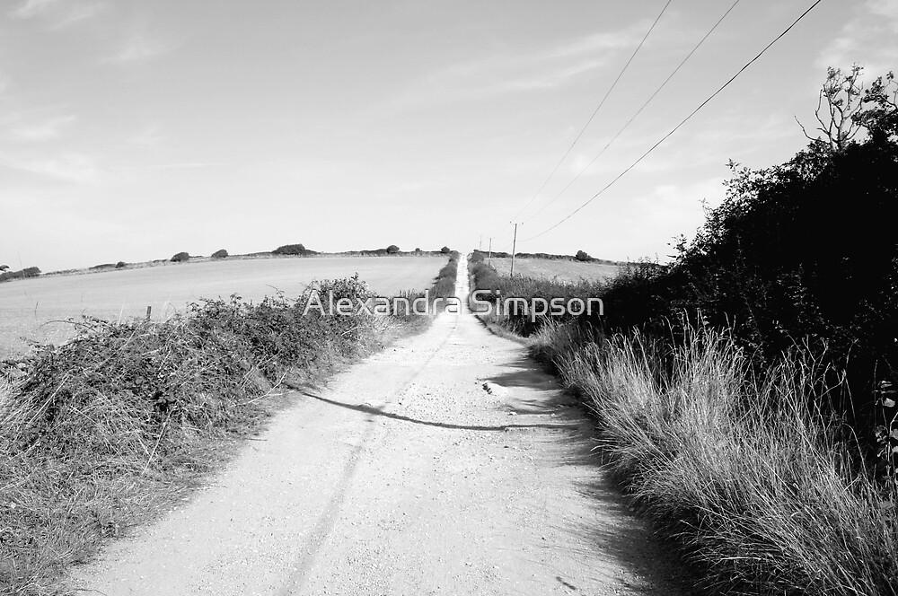 The Long Walk by Alex Simpson