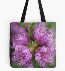 Melaleuca thymifolia Tote Bag