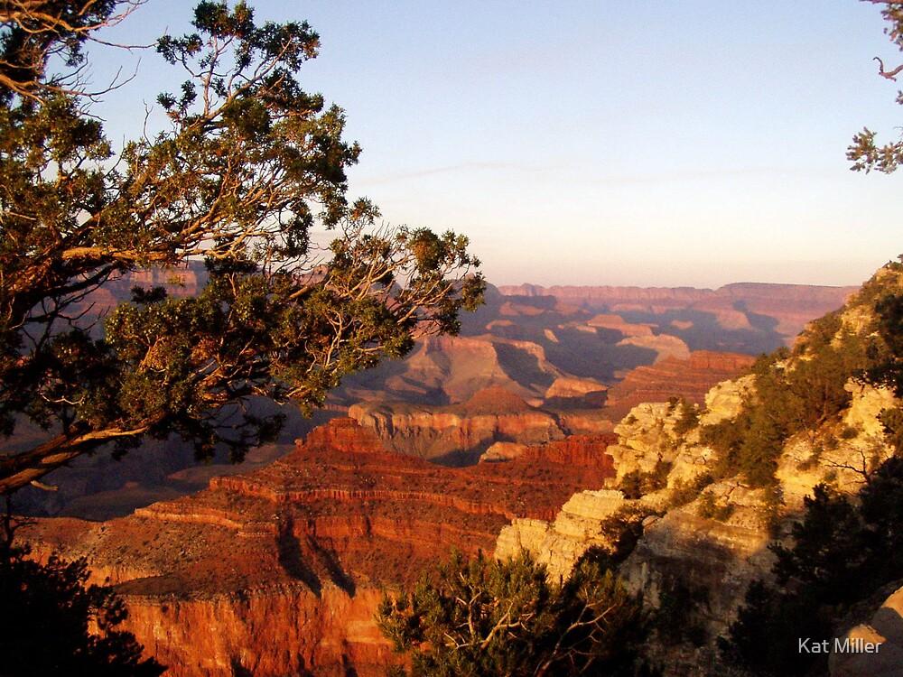 Grand Canyon Splendar by Kat Miller
