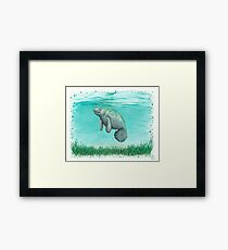 """""""Mossy Manatee"""" by Amber Marine ~ Watercolor and ink painting, art © 2016 Framed Print"""