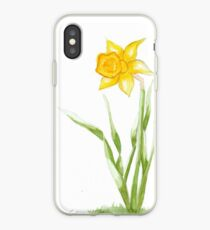 Daffy 1  iPhone Case