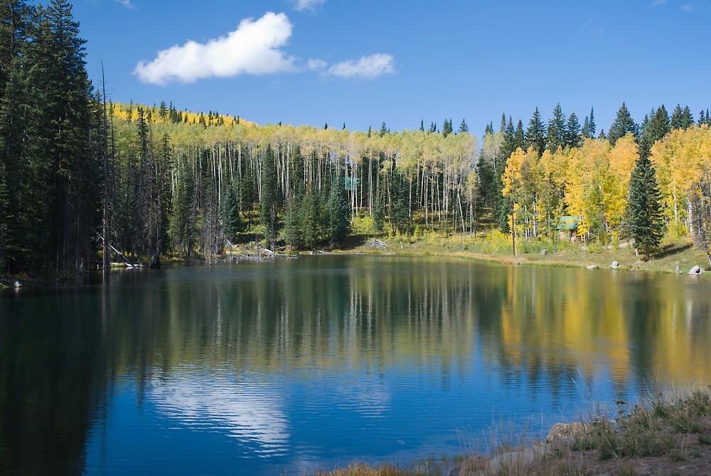 Glacier Lake, Grand Mesa, Colorado by bluerabbit