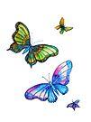 Butterflies - Follow the Leader by Linda Callaghan
