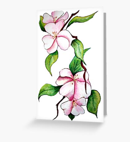 Apple Blossoms - Flowers Greeting Card