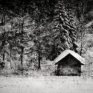 Hut at a lake by Kurt  Tutschek