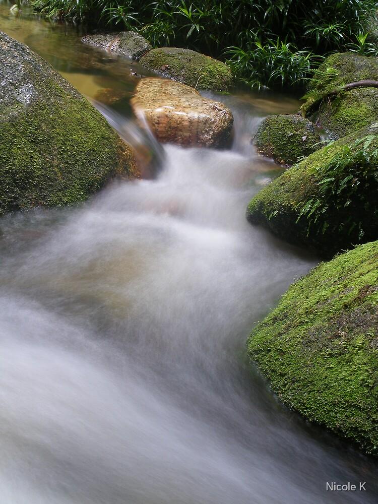 wurumbu creek by Nicole K