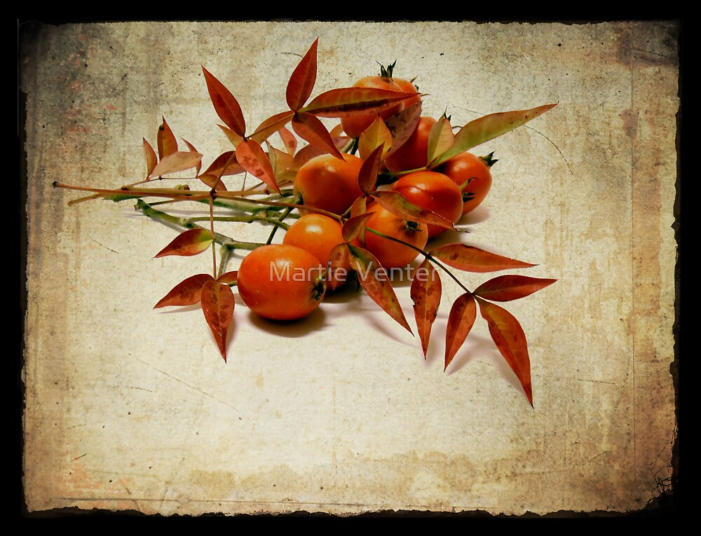 Textures of Autumn I by Martie Venter