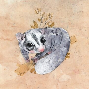 Sugar Glider! by CandyRainbow