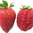 Two varieties of strawberries by GinnyDen