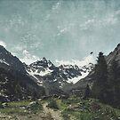 High Valley  Italian Alps by Dirk Wuestenhagen