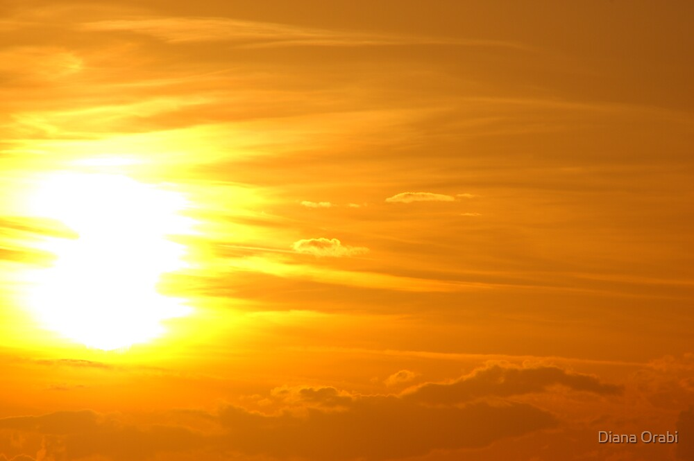 The Sun by Diana Orabi