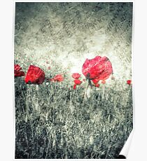 poppies & letters  Poster
