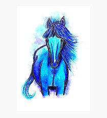 Free Spirit - Horse Photographic Print