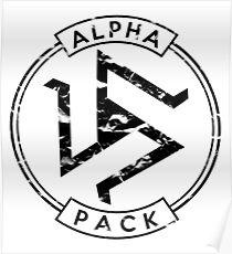 Alpha Pack (Black) - Teen Wolf Poster