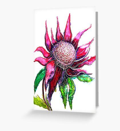 Wild Waratah Greeting Card