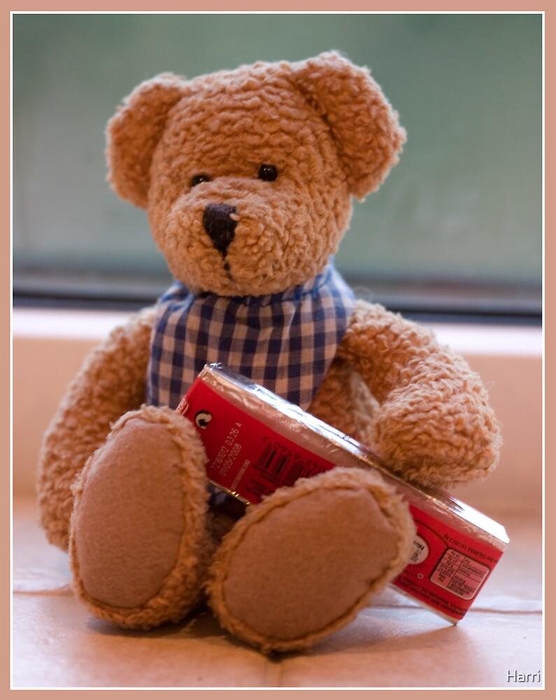 Teddy's Chocolate by Harri