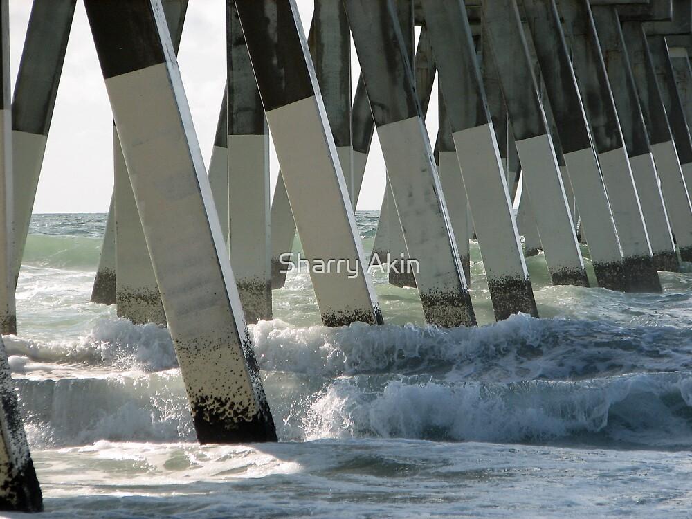 Johnny Mercer Pier by Sharry Akin