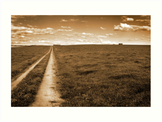 Lonely Road by identitymedia