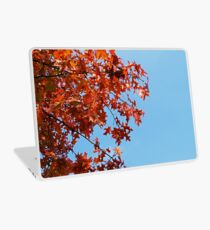 Autumn Leaves Laptop Skin