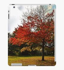 Tree in Fall iPad Case/Skin
