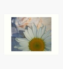 Daisy and Shell Art Print