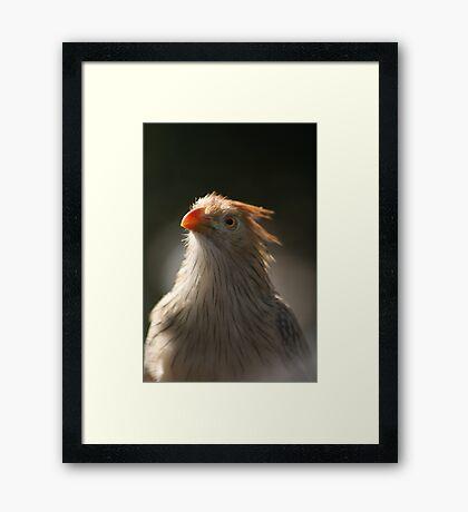 TINY TOO Framed Print