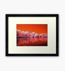 Tree's On Mars Framed Print