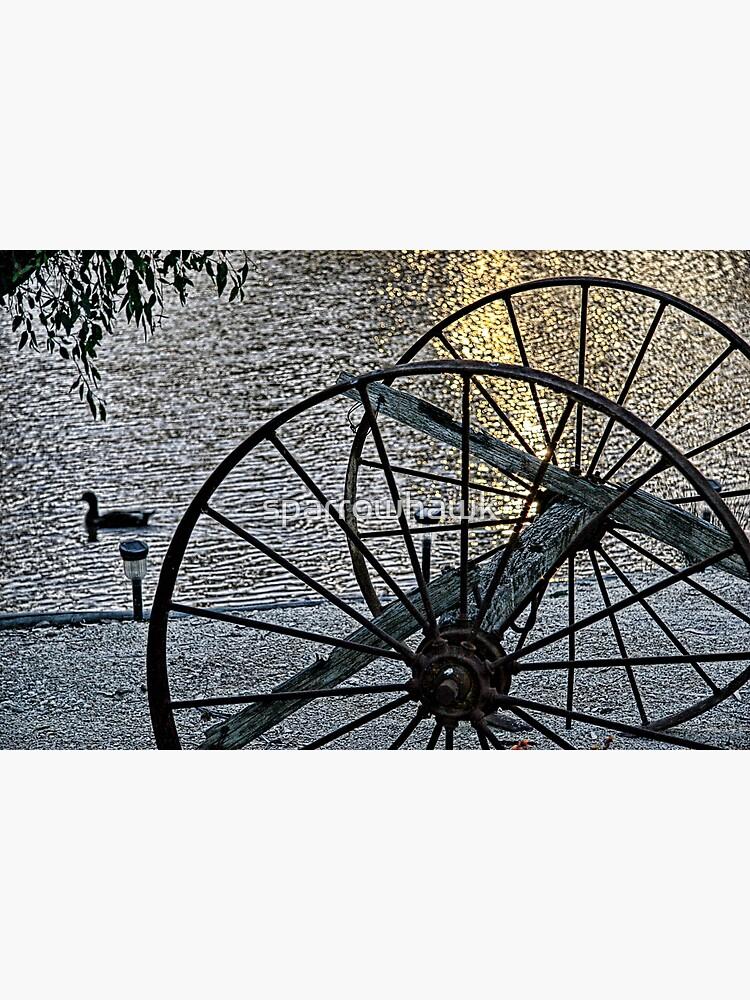 Wagon Wheels II by sparrowhawk