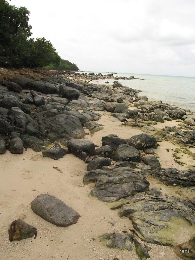 Phi Phi island  by rani